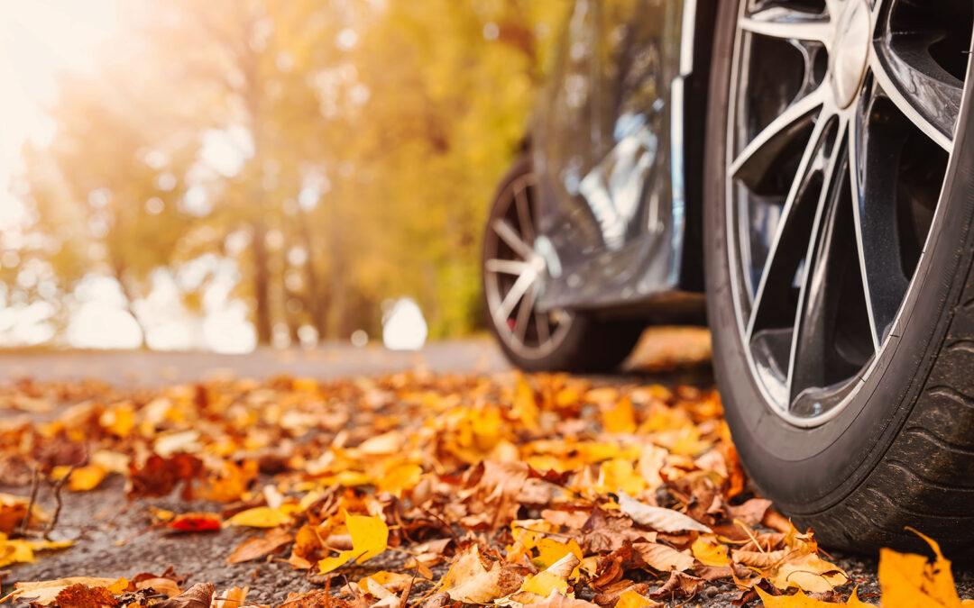 Ein Auto auf einer mit Blättern bedeckten Straße